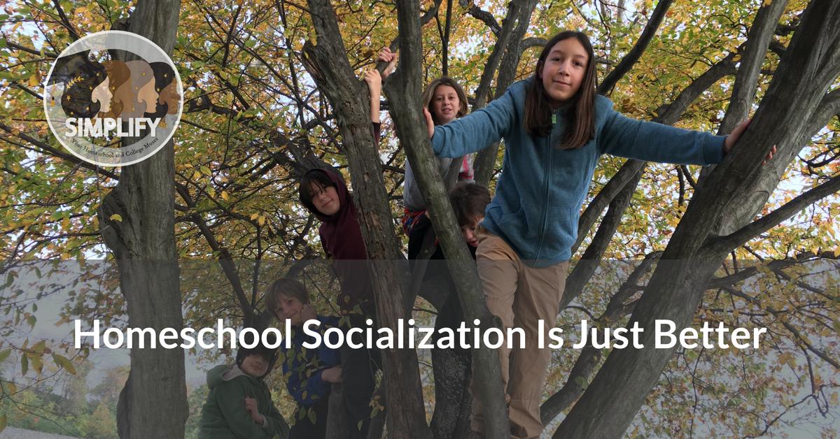 Socialization Blog Post
